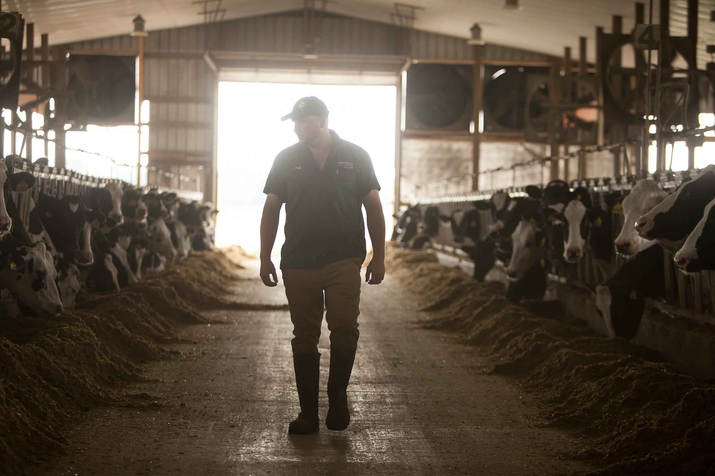 U.S. Dairy Advances Journey to Net Zero Carbon Emissions by 2050