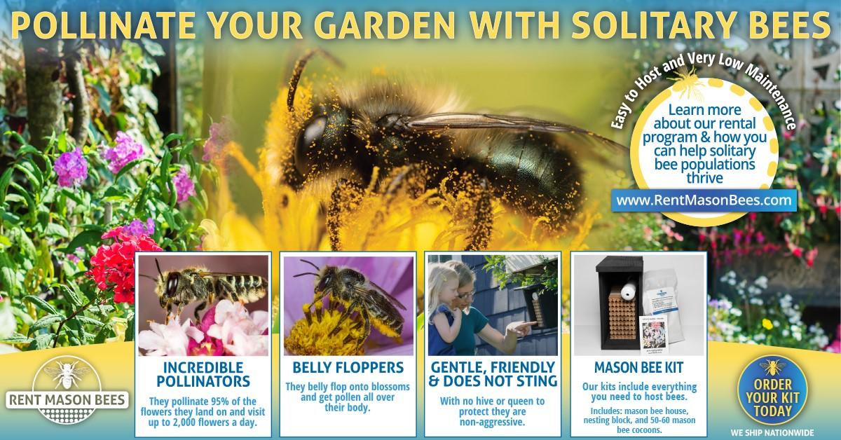 Pollinate Your Yard