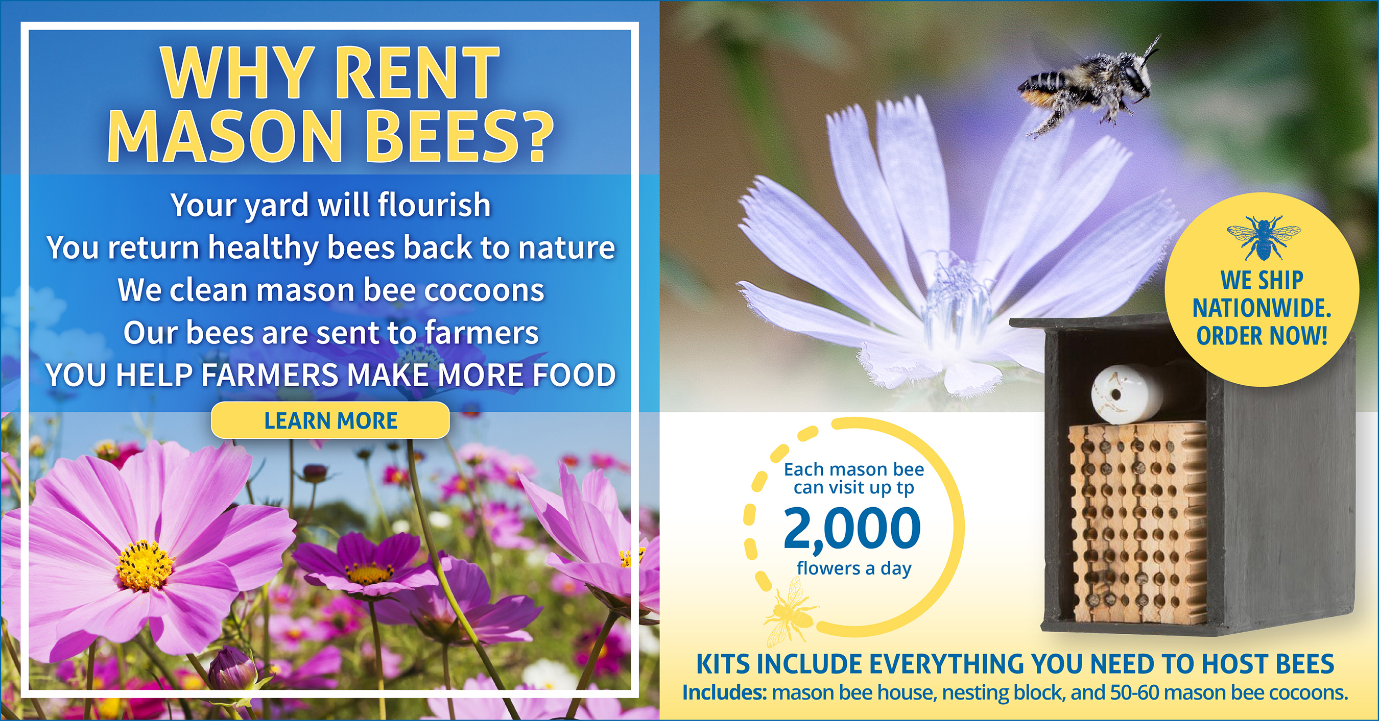 Reasons to rent solitary bees