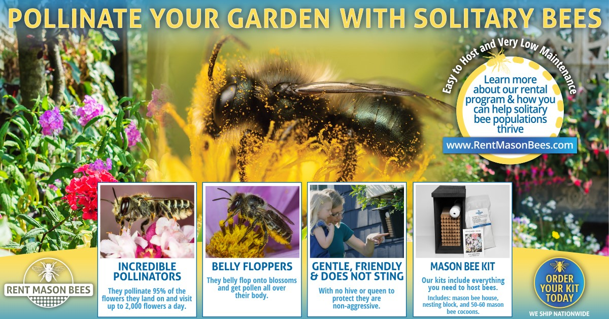 Pollinate Your Yard