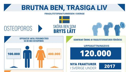 Broken Bones Broken Lives Report infographic for Sweden